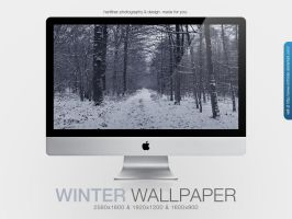 Winter Wallpaper by MrFolder