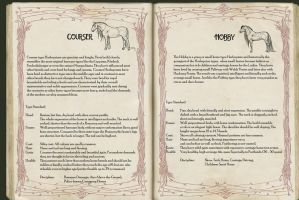 Encyclopedia Arlequina - Ch 6 Type - P3 by life-d-sign