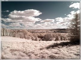 IR Landscape by JohnK222