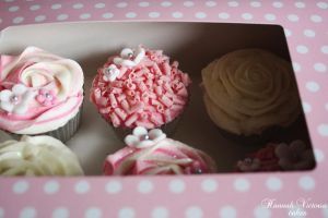 Pink Cupcakes by Hannah-Victoria