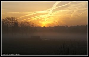 The sun begins to the new day with fog. by Bermiro