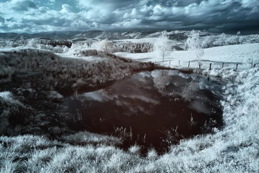Infrared3 by fripturici