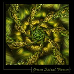 Green spiral flower by gitte