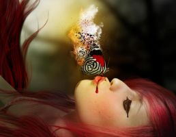 butterfly detail by Silvia15