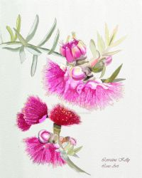 Pink Gumnut Painting by LorraineKelly