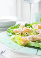 Chicken Caesar Salad by iconsPhotography