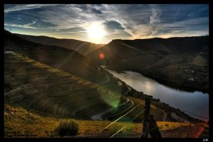 The Douro valley by patrik-kt