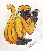 Coulter's Monkey by erisa