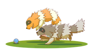 Zigzagoon-Race of Gluttons
