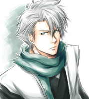 Bleach-Toshiro by MeinFJ666