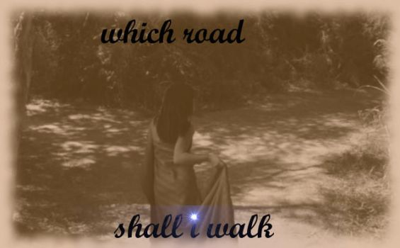 which road shall i walk by moonblade321