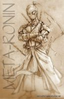 Meta Ronin by Jesther101