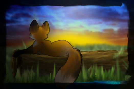 X-Watching the Sunrise-X by catdoq