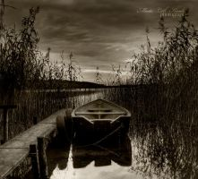 The one and only II by Initio