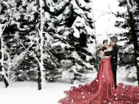 winter love by sinziana