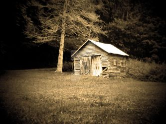 Old Butler's Shack by nathanielwilliam