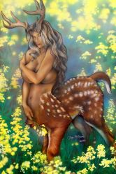 Fawn by DanMcManis