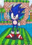 Sonic's 27th! by Comet12864