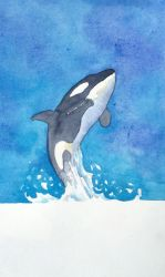 The Energy of an Orca by applecorekevin