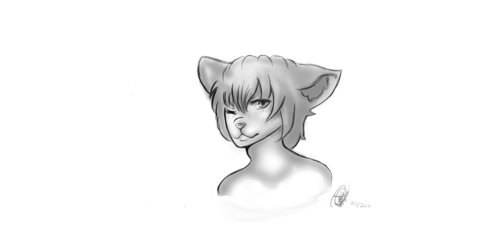 First Drawing using my tablets free softwares by FoxyCakes