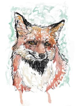 Inktober Day 5: Clever Like a Fox