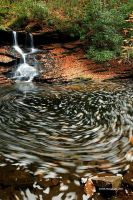 Middle Fall Autumn by TRBPhotographyLLC