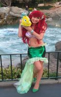 Ariel kind of day... by TheRealLittleMermaid
