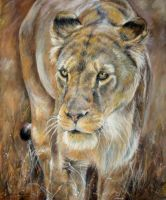 Queen of Africa by DaisyreeB