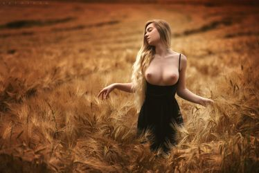 The Field Of Angels by ArtofdanPhotography