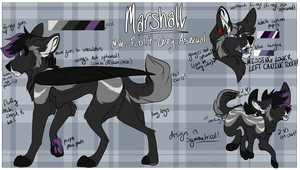 Marshall 2017 Reference Sheet by NekoMangaka