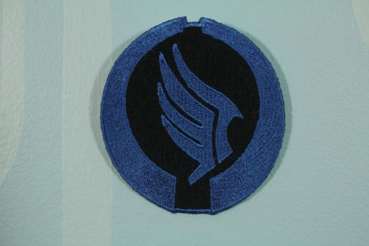 Mass Effect Paragon Patch by tommyfilth