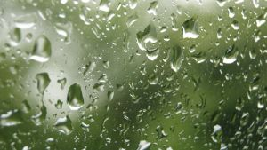 Rain Splashes Close Up by wafitz