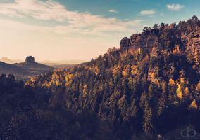 Falkenstein by Dapicture