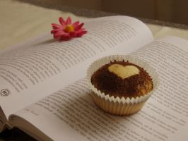 Sweet life with the book by Luczynka