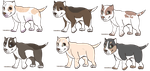 Puppy adopts by NOVlCE