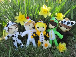 SHINee Hello Baby Plushies by VilleVamp