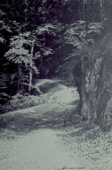Lost_trail by angra1811