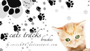 cats tracks brushes by sosisk86