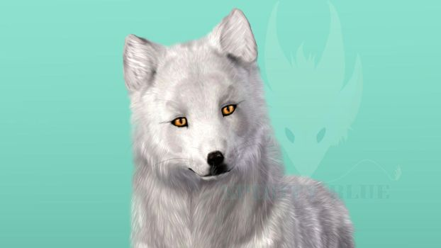 Sims 3 - Arctic Fox by SpirityTheDragon