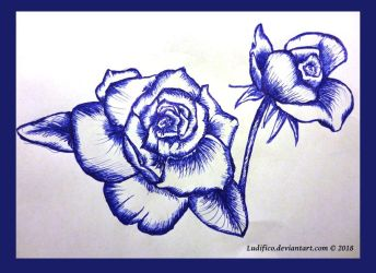 :::Blue Roses by Ludifico