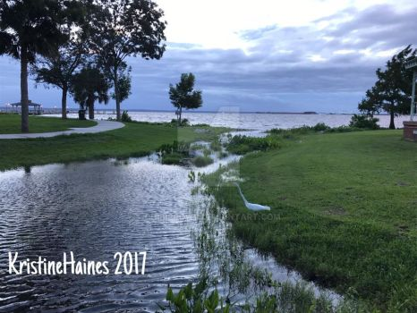 Spring Park in Green Cove Springs flooded by ChibiProwl