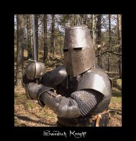 The Knight of Sweden by erra