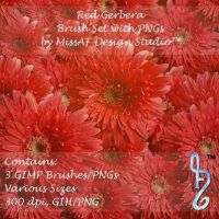 Red Gerbera Brush Set with PNGs Included by MissAFDesignStudio
