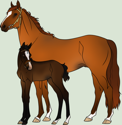 Mare and Foal Adopt |Set Price|CLOSED| by Just-Adoptions