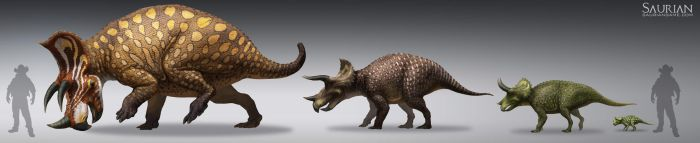 Saurian-Triceratops Lifecycle by arvalis