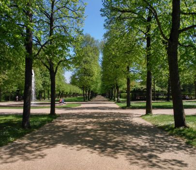 spring in the parc by Mittelfranke