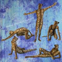 Zentai Tiger , 1-of-2 by Mystic-Creatures