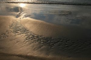 Sand by lucat25
