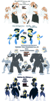 The Traveling PokeTroupe refs by ShadowScarKnight