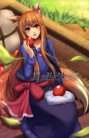 Spice and Wolf: Holooo by Kamaniki